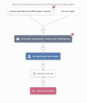 Eksempel på mailflow til et white paper