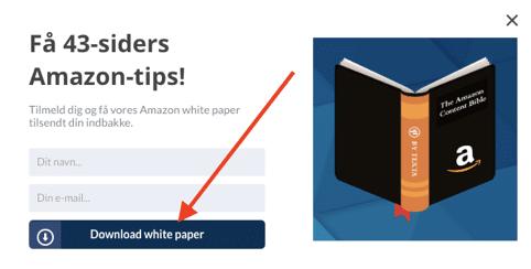 Eksempel på popup-annoncering i forbindelse med white paper-udgivelse