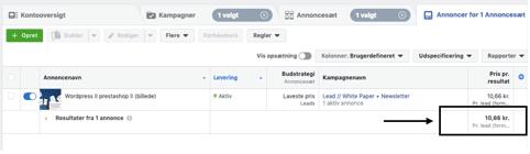 Screenshot fra Facebook Business Manager